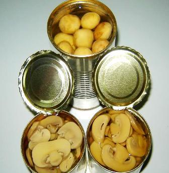 Canned champignon