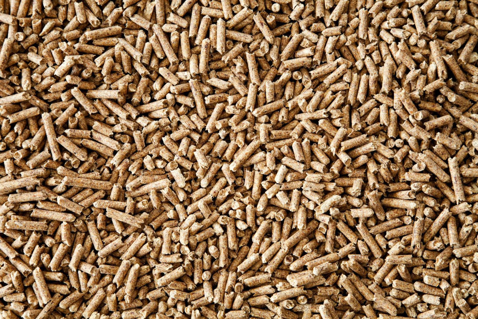 Types Of Wood Pellets ~ Rich moon co ltd is one company specialized in