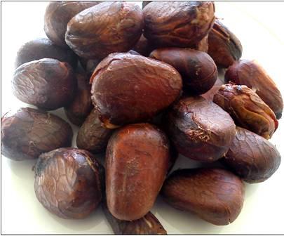 Jackfruit Seed